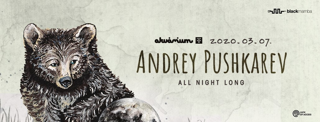 ANDREY PUSHKAREV ALL NIGHT LONG